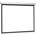 Экран Cactus 124.5x221 Wallscreen CS-PSW-124x221 16:9, настенно-потолочный, рулонный