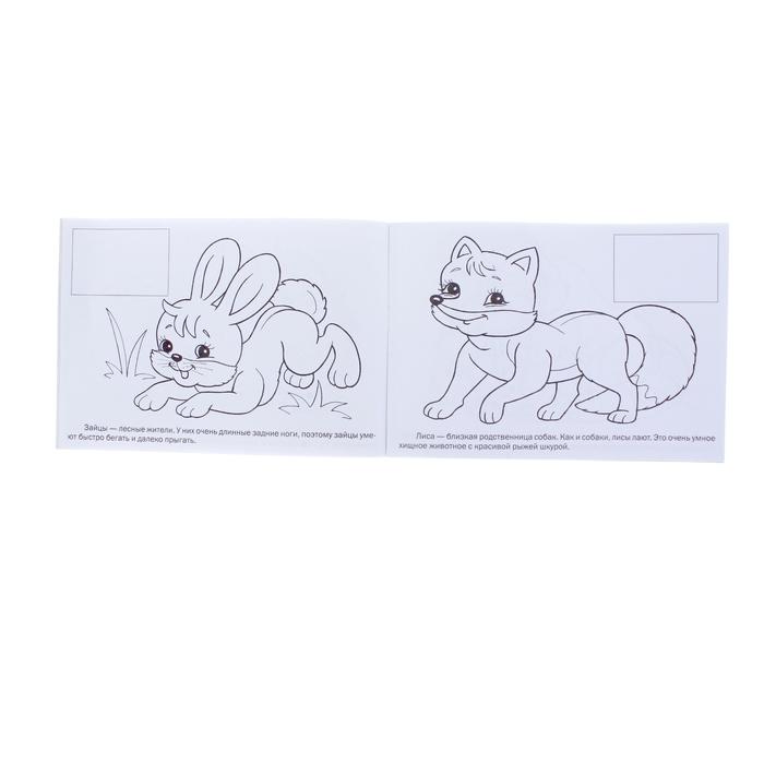 """Раскраска с наклейками А5. """"Мои первые уроки. Дикие животные"""""""