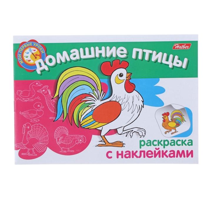 """Раскраска с наклейками А5. """"Мои первые уроки. Домашние птицы"""""""