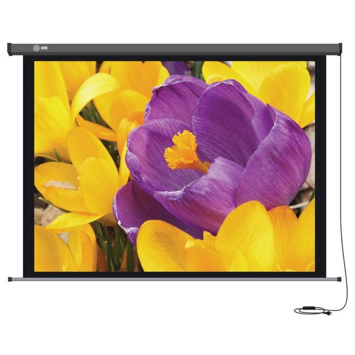 Экран Cactus 168x299 Professional Motoscreen CS-PSPM 16:9, настенно-потолочный, рулонный