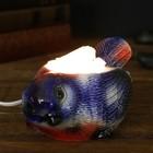 """Соляной светильник """"Синица"""" малый керамика, 7 х 10 х 15 см, микс"""