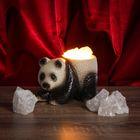 """Соляной светильник """"Панда"""" малый 15 x 10 см, керамическое основание"""