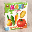 Макси-пазлы «Овощи», МИКС