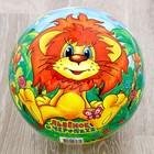 """Мяч """"Львенок и Черепаха"""", 23 см, в сетке"""