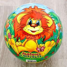 Мяч «Львёнок и Черепаха», 23 см, в сетке