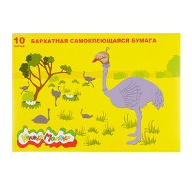 Бумага цветная самоклеящаяся бархатная 10 листов, 10 цветов «Каляка-Маляка», 175 х 250 мм