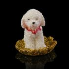 "Souvenir Polyresin ""Poodle on gold coins"" MIX 3x2,8x3,8 cm"