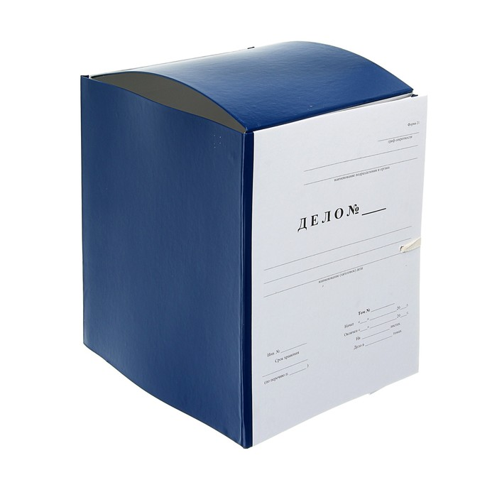 папка архивная А4 250мм Дело, бумвинил