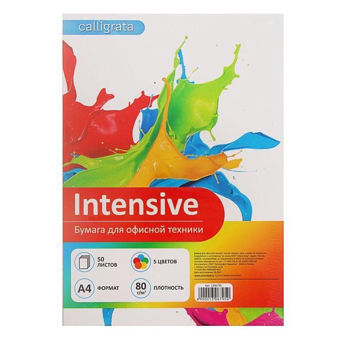 Бумага цветная А4, 50 листов Calligrata Интенсив, 5 цветов, 80 г/м² - фото 373638099