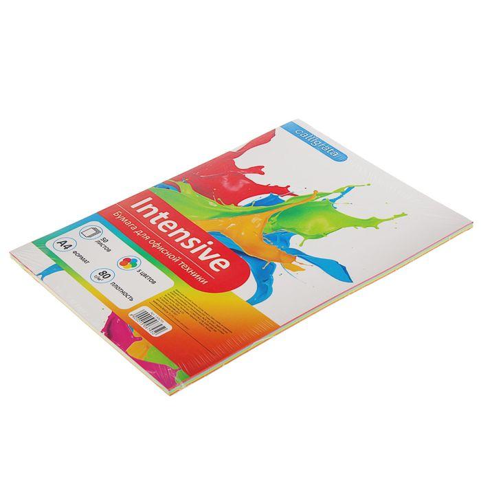 Бумага цветная А4, 50 листов Calligrata Интенсив, 5 цветов, 80 г/м² - фото 373638100