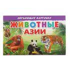 Обучающие карточки. Животные Азии