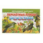 Обучающие карточки. Перелетные птицы России