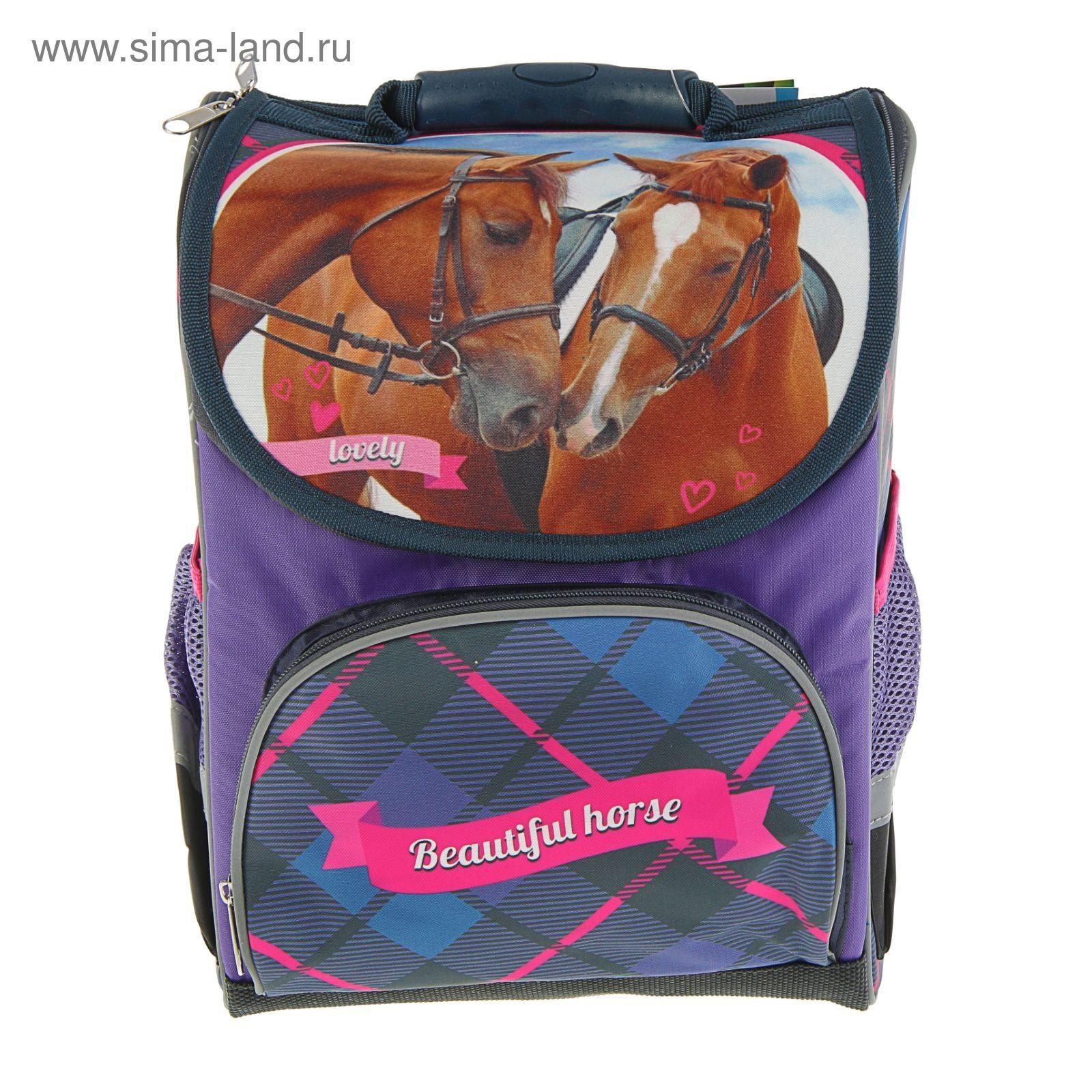 917e74742f5d Ранец Стандарт Limpopo Premium box 35x28x16 см, эргономичная спинка