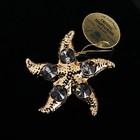 Сувенир «Морская звезда», с кристаллами Сваровски