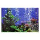 Фон для аквариума № 9Ф, односторонний, 40х60см