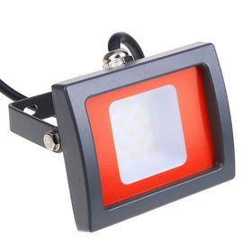Прожектор светодиодный Jazzway, 10 Вт, 6500 K, IP65, PFL-SC Ош