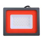 Прожектор светодиодный Jazzway, 50 Вт, 6500 K, IP65, PFL-SC