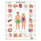 """Пазл """"Наше тело"""", 35 деталей (OB1)"""