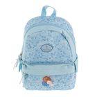 Рюкзак молодёжный Gapchinska 994 GP-2, 38 х 27 х 13 см, голубой