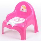 Горшок-стульчик «Ниш» с крышкой, цвета МИКС