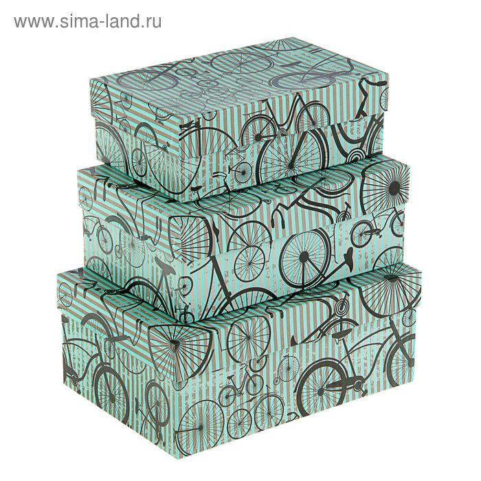 "Набор коробок 3в1 ""Моноциклы на салатовом"", 23 х 16 х 9.5 - 19 х 12 х 6.5 см"