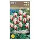 6a9074f52 Мини-витрина Тюльпаны Триумф Хеппи Дженерейшн 200 шт