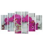 """Модульная картина на подрамнике """"Орхидея фаленопсис"""", 150×84 см"""