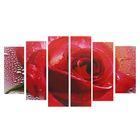 """Модульная картина на подрамнике """"Роза"""", 2 — 25×57,5, 2 — 25×74,5, 2 — 25×84,5 см, 150×84,5 см"""