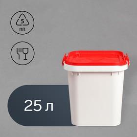 Бак пищевой «Для солений», 25 л, с герметичной крышкой