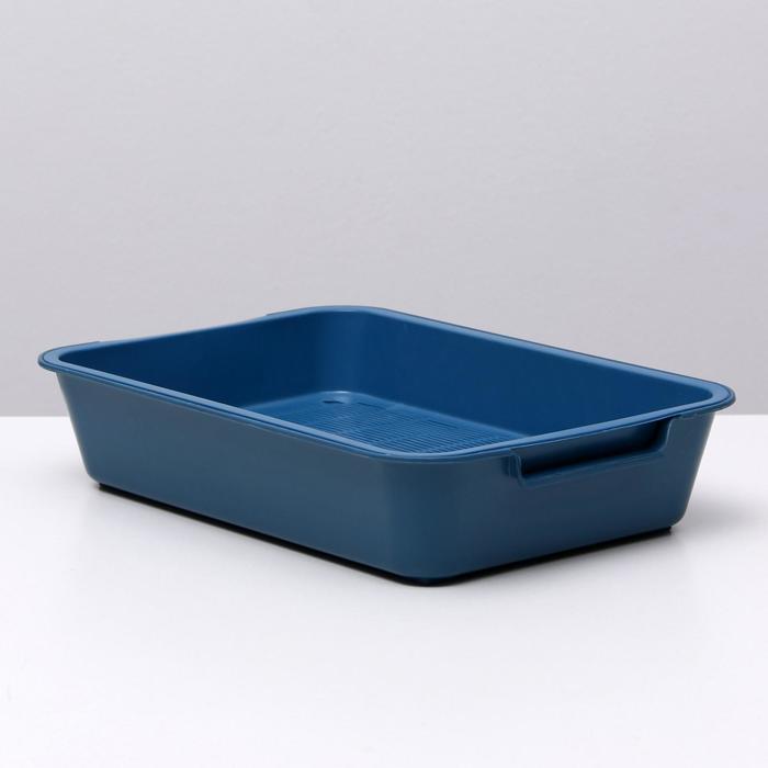 """Туалет с сеткой """"Белла"""" для кошек, 37 х 27 х 8 см, синий"""
