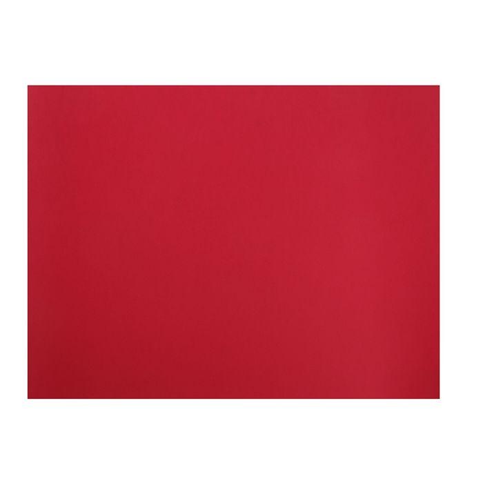Бумага для пастели 500*650 Canson Mi-Teintes 1 л 160 г/м2 №505 Красный яркий 200321204