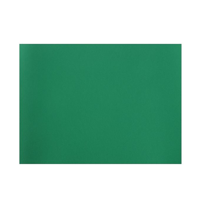 Бумага для пастели 500*650 Canson Mi-Teintes 1 л 160 г/м2 №575 Виридиан 200321234