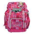 Рюкзак школьный с эргономичной спинкой Sternbauer на затяжке Vip 39*27*19 розовый 5601
