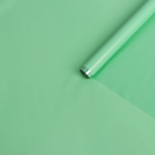 Пленка для цветов и подарков тонированный лак нежно-салатовый 0.7 х 8.2 м, 40 мкм