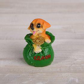 "Сувенир полистоун ""Пёсик в мешке/лодочке с золотыми монетами"" МИКС 6,3х5х3,5 см в Донецке"