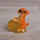 "Souvenir Polyresin ""Doggy dollars/coin"" MIX 8,5х6х4,5 cm"