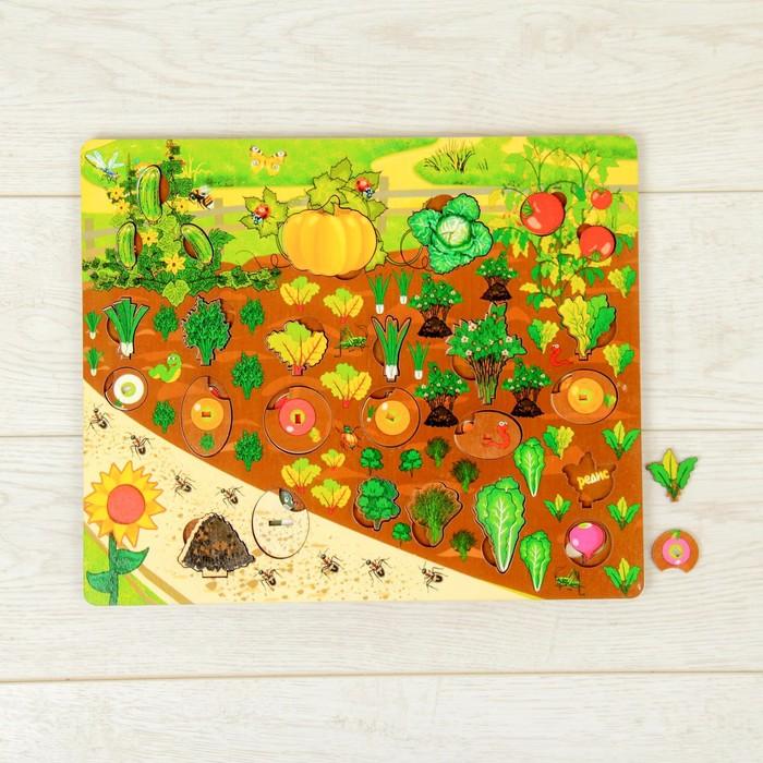 Набор «Овощи на грядке»