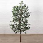 """Дерево искусственное """"Фикус Фолиа"""" 150 см - фото 939960"""