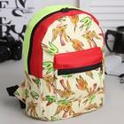 Рюкзак на молнии, 1 отдел, наружный карман, цвет бежевый/разноцветный