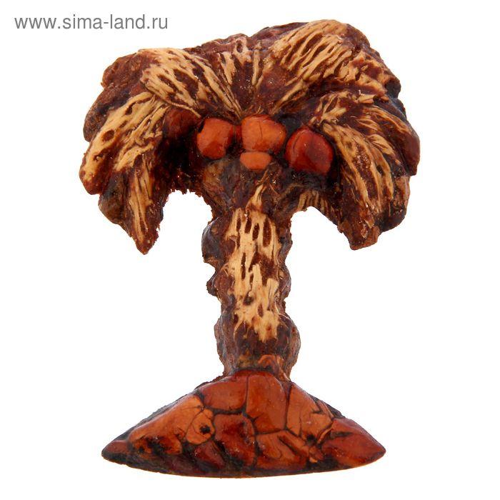 """Сувенир из кедропласта на магните """"Пальма"""" 5,5x5,5 см"""
