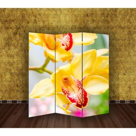 "Ширма ""Орхидеи"", 160 × 150 см"
