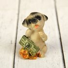 "Souvenir Polyresin ""Mopsik on the coins/money"" MIX 4х3х2,5 cm"