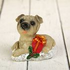 "Souvenir Polyresin ""the Dog with Christmas paraphernalia"" MIX 5,2x5,7x4 cm"