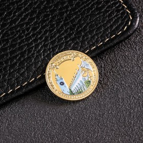 Монета «Сочи», d= 2.2 см Ош
