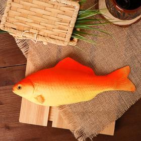 "Dummy ""Fish Barbus"""