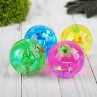 """Мяч световой """"Рыбка"""" с водой 5,5 см, цвета МИКС"""
