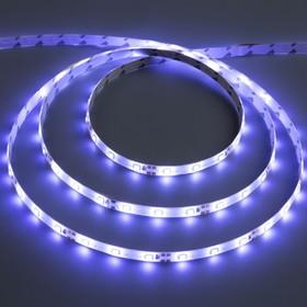 Светодиодная лента 12 В DC, 60SMD2835, 5 м, IP65, 6 Вт/м, холодный белый