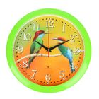 """Часы настенные круглые """"Птички"""", """"Рубин"""", 26х26 см зеленый обод"""