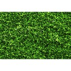 Фотосетка «Зелёная изгородь», 250 х 158 см, с фотопечатью
