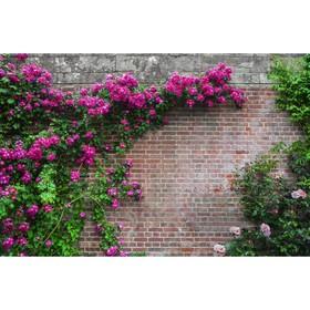 "Photo banner, 250 × 200 cm, with photo printing, ""Brick wall"""